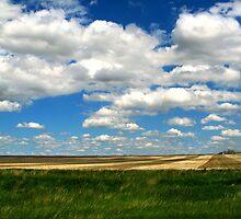 Endless Sky by Leanna Lomanski