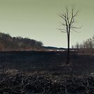 Aftermath by JeniGoci