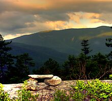 The Bench on Blueberry Mountain by Wayne King