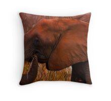Kruger Elephant Throw Pillow