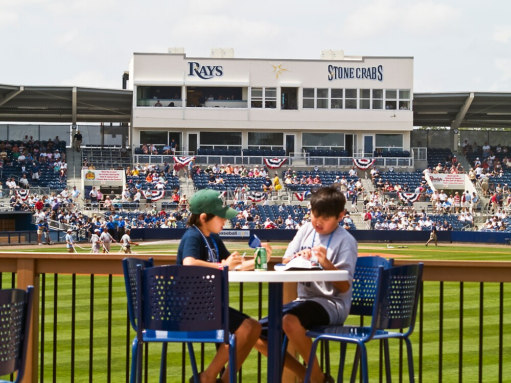 Young Boys Love Baseball - Tampa Rays Stadium by Memaa