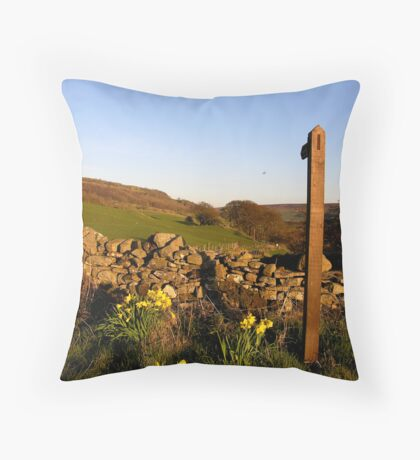 Spring in Swaledale Throw Pillow