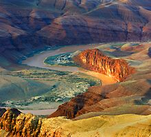 Colorado River by Steve  Taylor