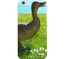 Duck by water iPhone Case/Skin