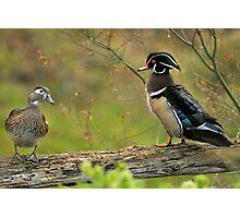 I Do NOT Walk Like a Duck! Photographic Print