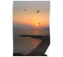 Beautiful Sunset And Sea Gulls Poster