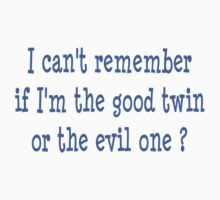 I can't remember if I am the good twin or the evil one by Michelle Shoosmith