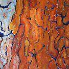 Tree Bark by Enoeda