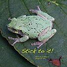 Stick to it! by Alice Kahn