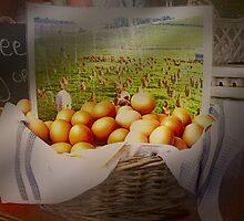 Free range eggs . . . by Rosalie Dale