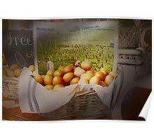 Free range eggs . . . Poster