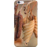 Dried Leaf iPhone Case/Skin
