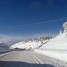 Frozen Lines by JeanMCarlos