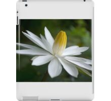 Night Bloomer ~ White Water Lily with Splayed Petals   iPad Case/Skin