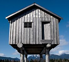 House for Rising Waters by titus