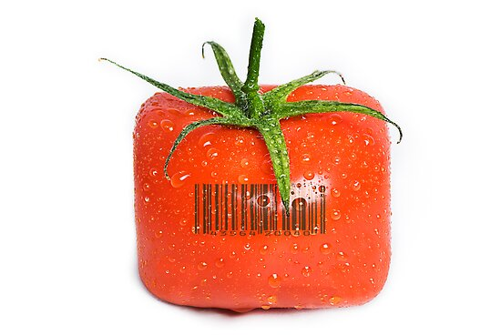 Square Tomato with a barcode. by Ryan Carter