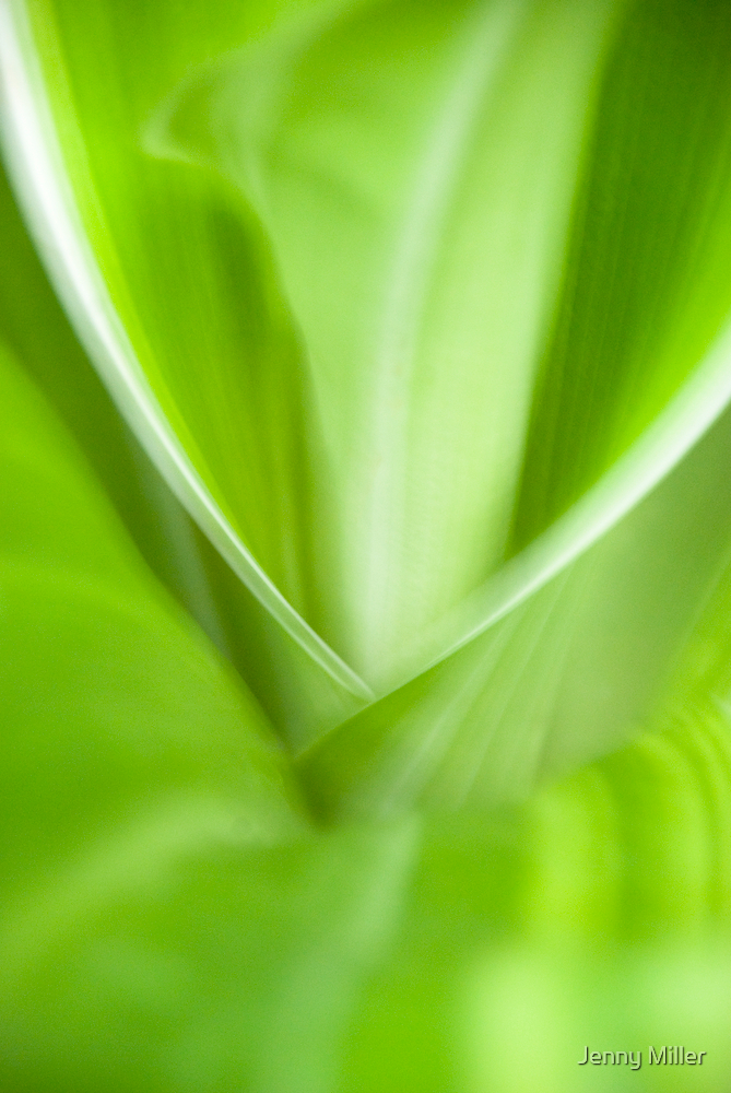 Blurry Green by Jenny Ryan