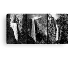 Free Falling Canvas Print