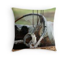 melted windscreen narbethong Throw Pillow