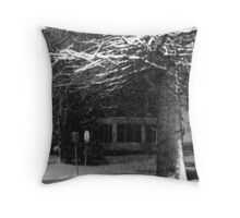 Cold Corner Throw Pillow
