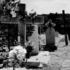 CHILLILI, NEW MEXICO GRAVEYARD (CARD) by Thomas Barker-Detwiler