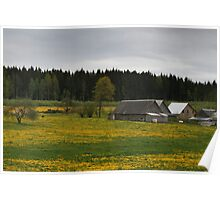 Countryscape in Day Poster
