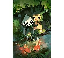 Chespin & Pancham Photographic Print