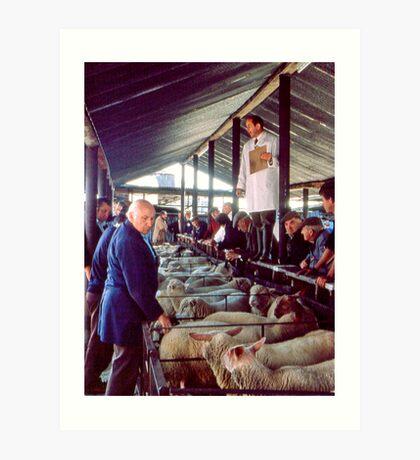 Axminster livestock market Art Print