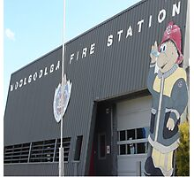 Fab Firestation Photographic Print