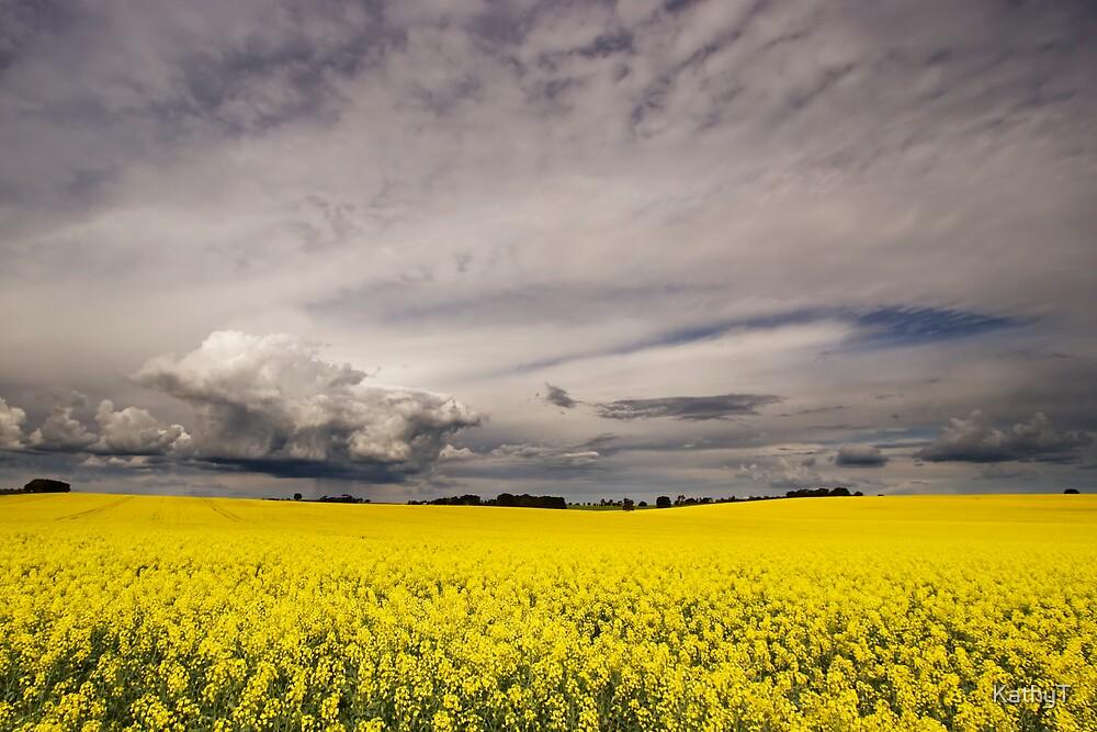 Stormy Skies by KathyT
