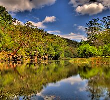 Let Us Reflect - Hacking River - Royal National Park - The HDR Experience by Philip Johnson