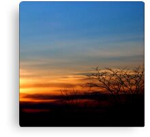 Sunset in March Canvas Print