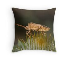 Gently does it! Throw Pillow