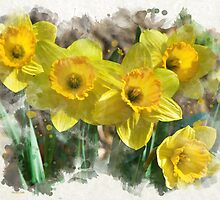 Spring Daffodils Watercolor Art by Christina Rollo