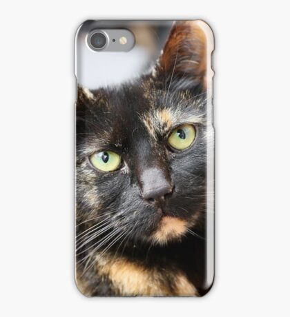 Tortoiseshell iPhone Case/Skin