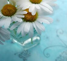Daisies on a blue background by AlisonBurford