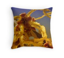 Witch Hazel Blossom Throw Pillow