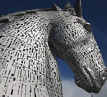 The Kelpies - Duke (3) by MagsWilliamson