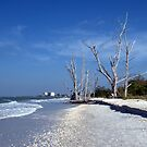 Lovers Key Beach and State Park by Virginia N. Fred