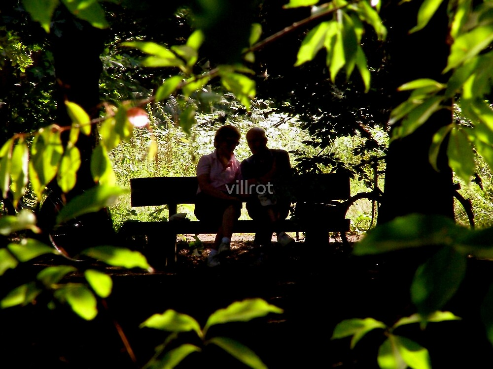 Quiet Bliss by villrot