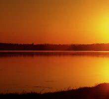 Setting Sun by JadeHarmony