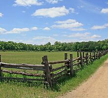 Fence and Blue Sky by Gary Horner