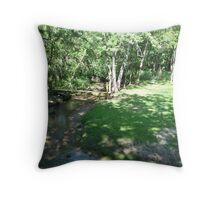 Discgolfing beauty Throw Pillow