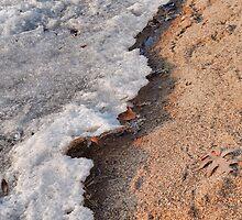 Winter Receding on Gull Lake  by Robert Meyers-Lussier