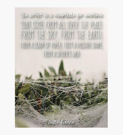 Spider's Web Pablo Picasso Quote  Photographic Print