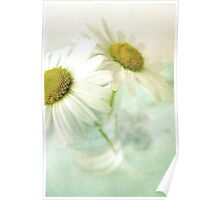 Daisies in glass on green background Poster