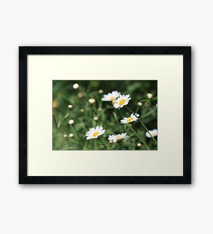 singalong Framed Print