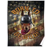 Born To Be Wild - Fun Squirrel Print / Tshirt Poster