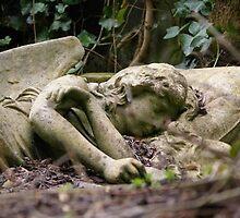 Sleeping Angel by Melanie Whitfield
