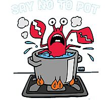 Say No To Pot Photographic Print